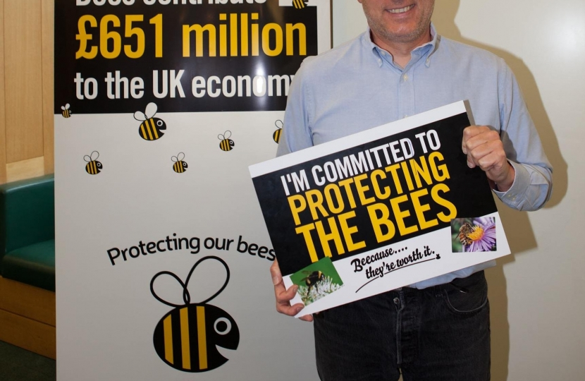 Crawley MP: Keep the ban on bee-harming pesticides