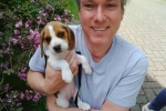 Crawley MP urges Crawley dog owners not to 'paws' in getting their pet chipped